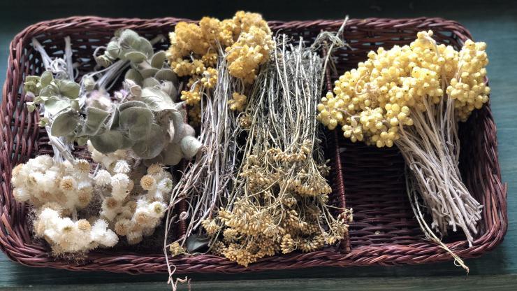 michelle gagnon flowers