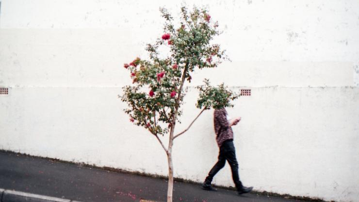 man walking by a tree on a city street
