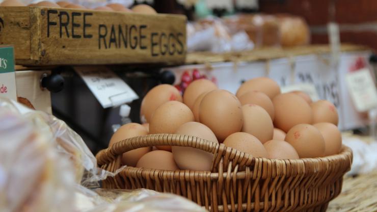 Free Range Eggs In Basket