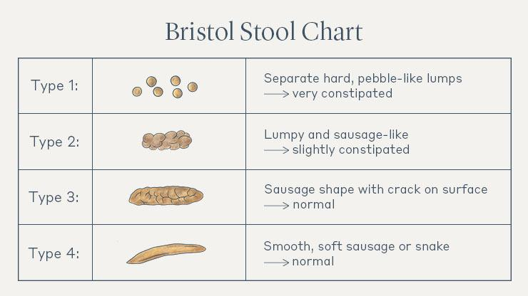 Infographic of the Bristol Stool Chart